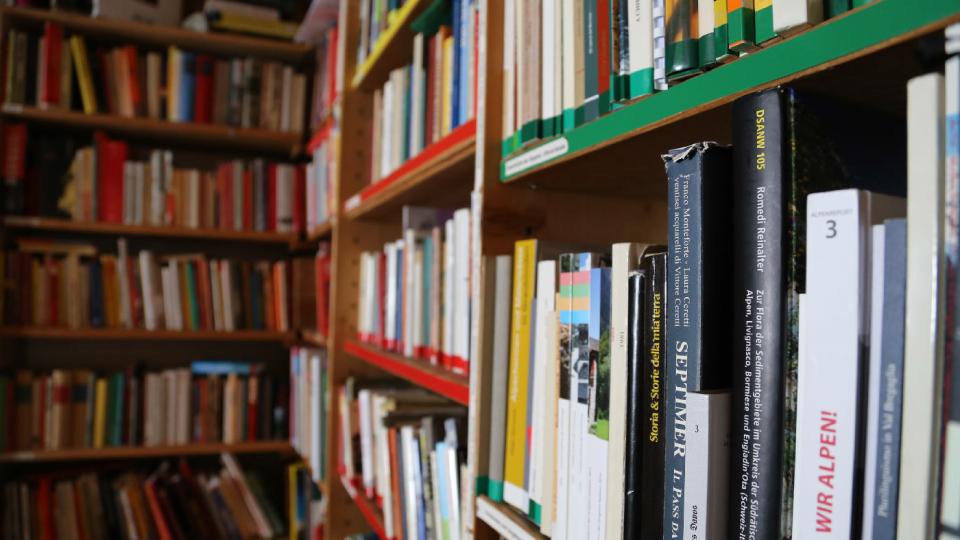 Books on shelves resembling library.